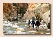 Moab Canyons - Jordanie