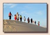 Sinai Excursions