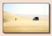 Le Desert Egypte